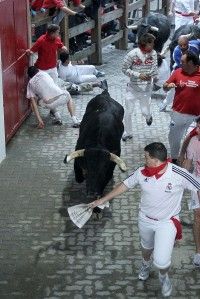 The running of the bulls in Pamplona 2012/ photo Pachi Calleja