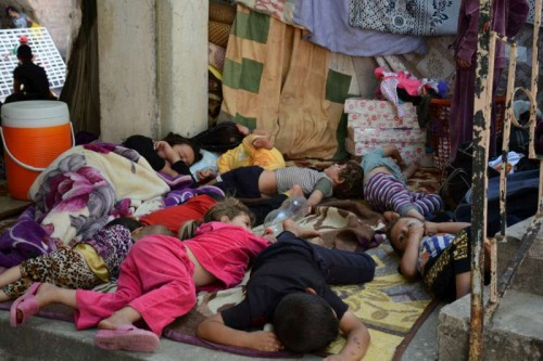 Members of an ethnic Yezidi family sleep in the shade in Shekhadi village, Iraq, after fleeing Sinjar. Photo: UNHCR/N. Colt